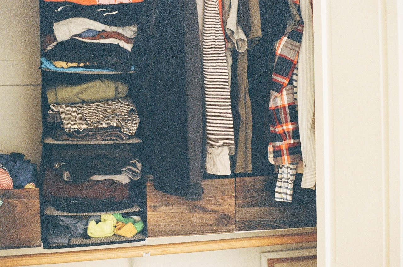 closet with organized shelves and hanging clothing