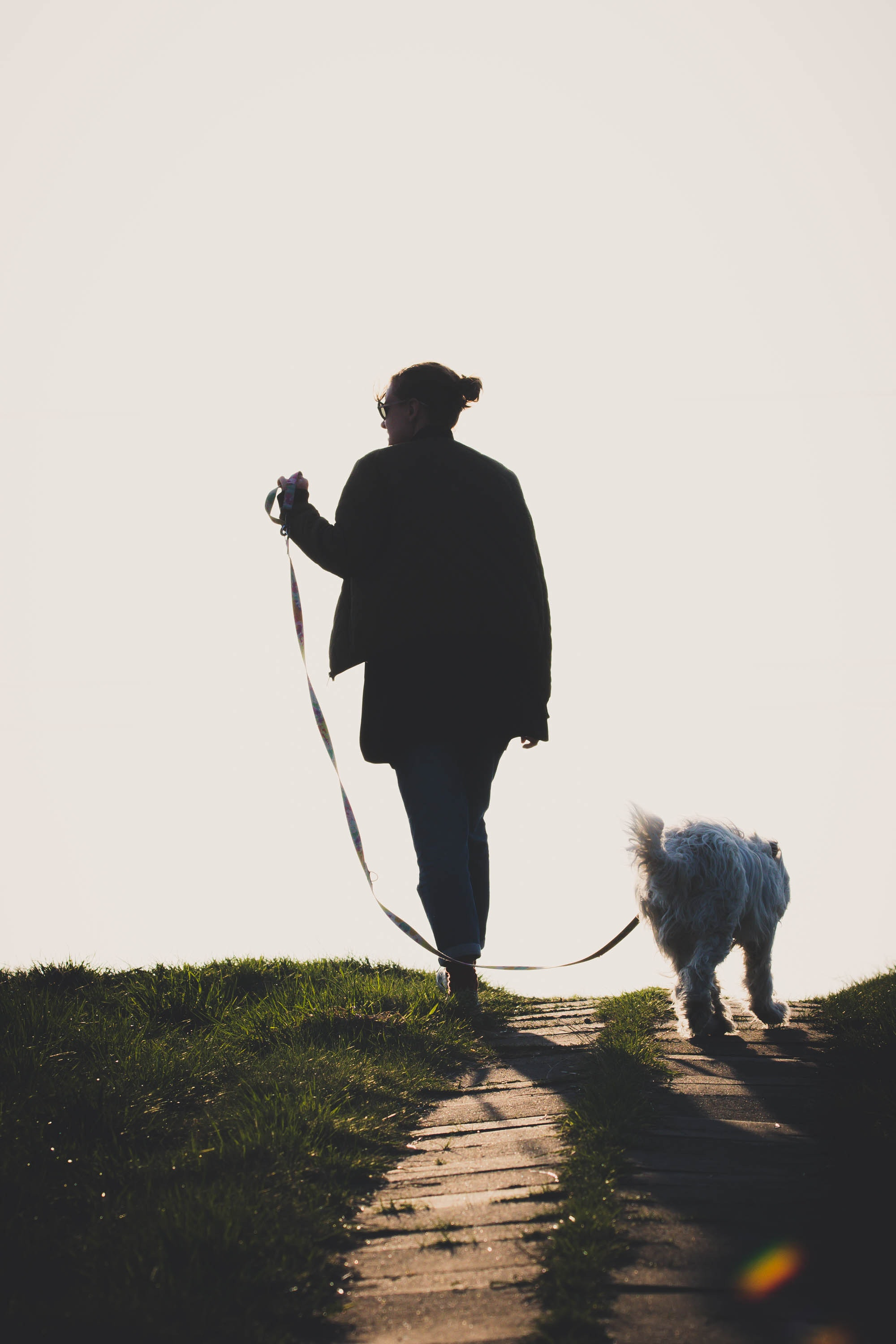 Woman with walking white dog